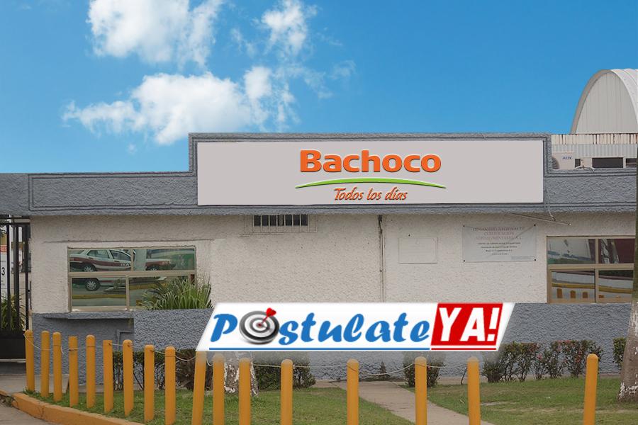 Bachoco Ofrece Empleo En México